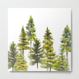 Coniferous Forest 1 Metal Print