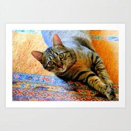 Click, Wha...! Art Print