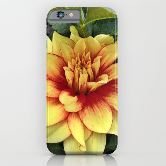 Flower of Hope iPhone & iPod Case