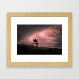 Hobbiton, New Zealand Framed Art Print