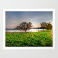 Nygren Wetlands Art Print