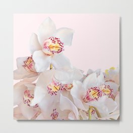 Flowers  Photography | Orchids | Pink Flowers | Floral Metal Print