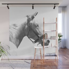 White horse Wall Mural