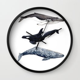 Orca, humpback and grey whales Wall Clock
