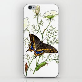 Black Swallowtail iPhone Skin