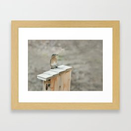 Build Your Nest Framed Art Print