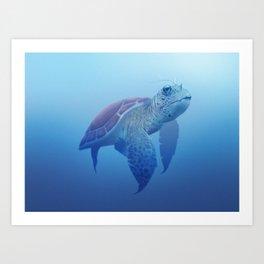 Turtle! Art Print