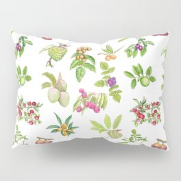 Tropical Fruit Pillow Sham