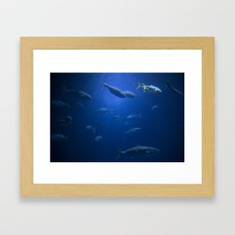 Just Swimming Framed Art Print