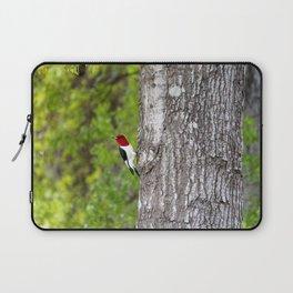 Red-headed Woodpecker Laptop Sleeve