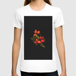 The branch with the fruits of wild rose on a black background T-shirt