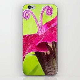 Antenna Flower Pink iPhone Skin