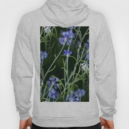 Cornflowers on Dark Background #decor #society6 #buyart Hoody