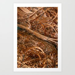 Copper Abstract Art Print