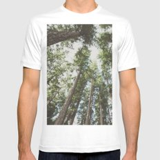 Forest Sky - Green Trees Reaching into the Clouds MEDIUM Mens Fitted Tee White