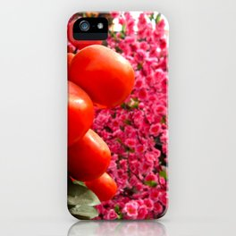 Orange Clementines and Pink Trees iPhone Case