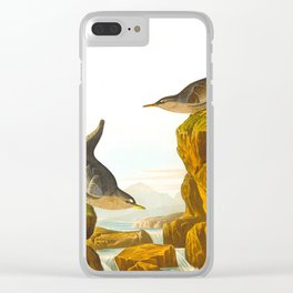 Columbian Water Ouzel Clear iPhone Case