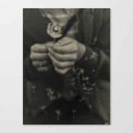 Blown Canvas Print