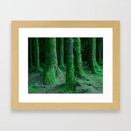 IRISH FOREST Framed Art Print