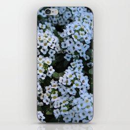 A Fairy's Home iPhone Skin