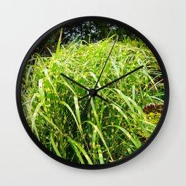 Zebra Grass Wall Clock