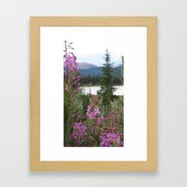 Beautiful Colorado Framed Art Print