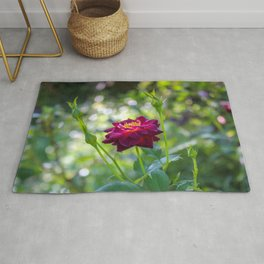 Spectacular Lovely Crimson Red Rose Blossom Ultra HD Rug