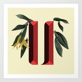 Letter 'U' is for Uvularia Art Print