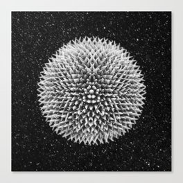 Spiked ball Canvas Print