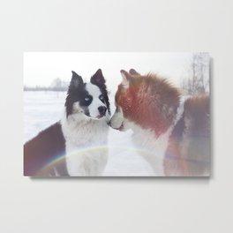 Husky dogs on winter landscape Metal Print
