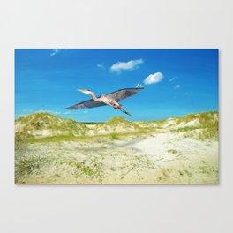 Great Blue Heron on Cumberland Island Canvas Print