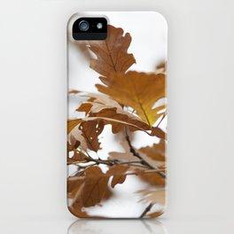 Canadian Prairies 7 iPhone Case