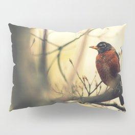 Robin in the Fall Pillow Sham