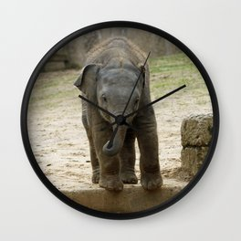 Elephant_20171101_by_JAMFoto Wall Clock