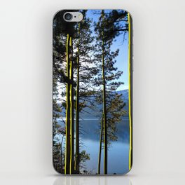 Golden Forest iPhone Skin