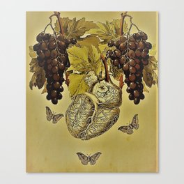 Nor Time, Nor Wine. Canvas Print