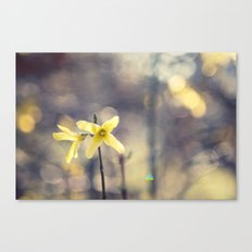 Garden: end of winter Canvas Print