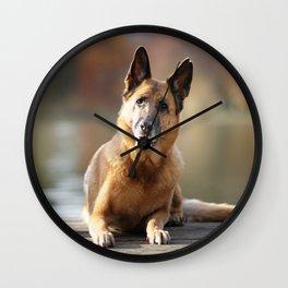 German Shepherd enjoys the Indian Summer Wall Clock