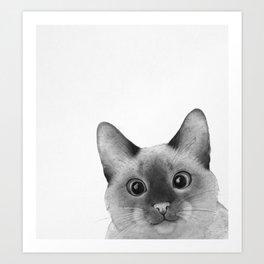 Siamese sneak-a-peek Art Print