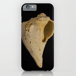 States of Erosion Image 1 Whelk Seashell Coastal Nature Photo iPhone Case