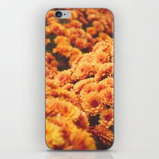Mums the Word iPhone & iPod Skin