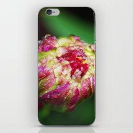 Unopened flower bud iPhone Skin