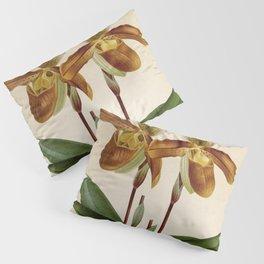 Cypripedium crossianum old plate Pillow Sham