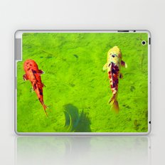Colorful Catch Laptop & iPad Skin
