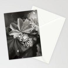Secret Garden ~ No.11 Stationery Cards