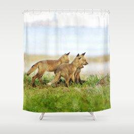Curious Fox Pups Shower Curtain