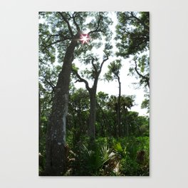 Vertical Panorama  Canvas Print
