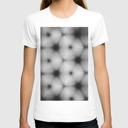 Abstract fruit section 2.0. T-shirt