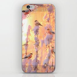 Bullfinch Birds In Sunny Winter Morning #decor #society6 iPhone Skin
