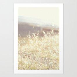 Vintage Wildflowers Art Print